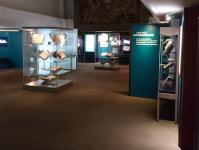 Ausstellungsraum Elfenbein und Ewigkeit