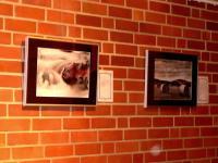Ausstellung GedankenGänge