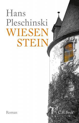 """Buchcover """"Wiesenstein"""""""