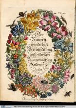Titelblatt von Maria Sibylla Merian: Der Raupen wunderbare Verwandelung und sonderbare Blumennahrung, Band 2, Nürnberg 1683